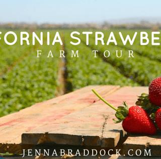 California Strawberry Commission bloggers farm tour 2015. #MakeHealthyEasy via @JBraddockRD