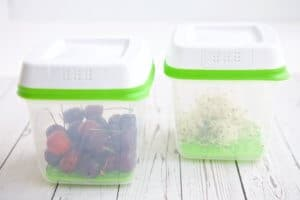 Rubbermaid GreenSaver Review