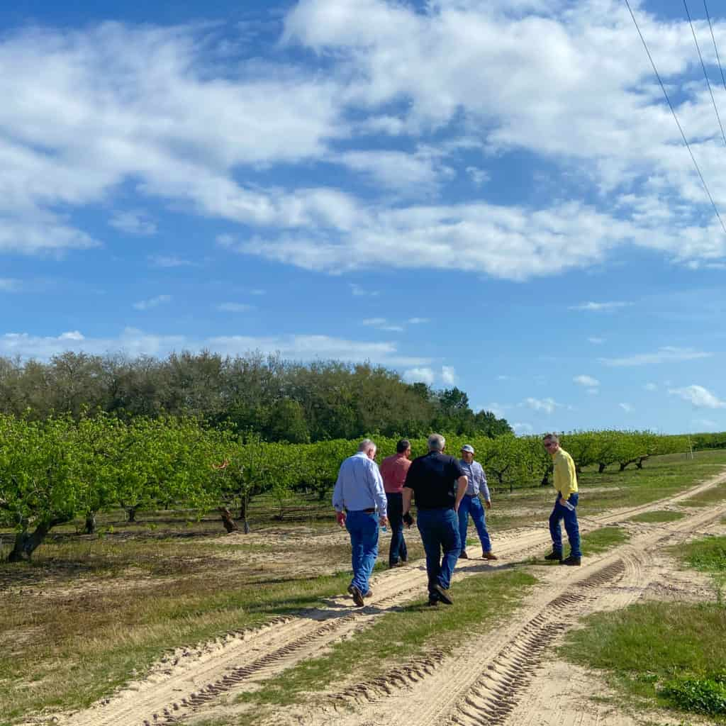 why buying florida produce matters -Florida peach farm